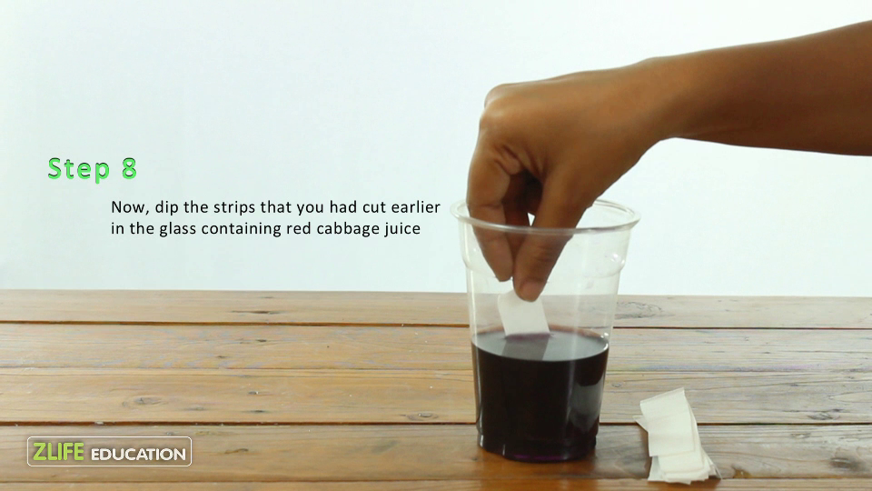 Red Cabbage pH strips 6