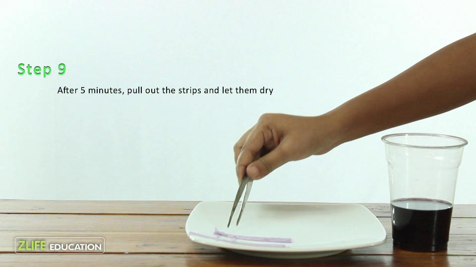 Red Cabbage pH strips 5