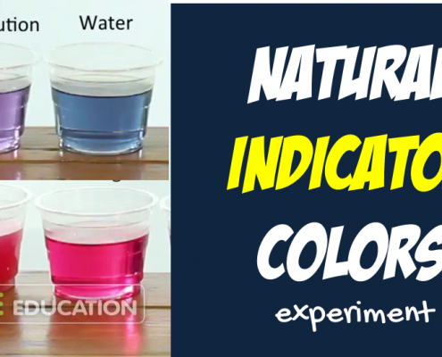 Kitchen Indicator : Experiment from Chemistry Kit for Kids