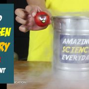 Liquid Nitrogen Angry Birds Science Demonstration Activity