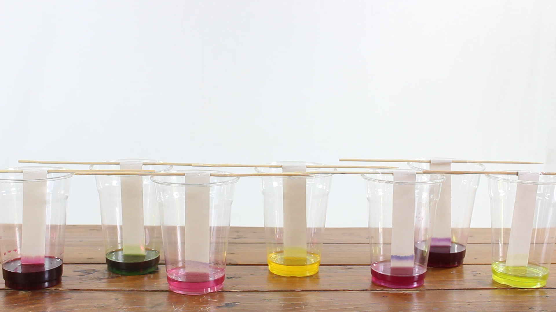 paper chromatography chemistry experiment with colors